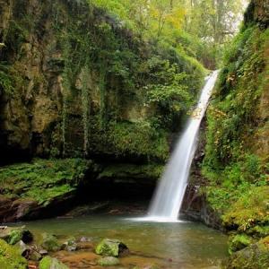 عکس - آبشار زمرد , پدیده ای بکر در جنگل حویق