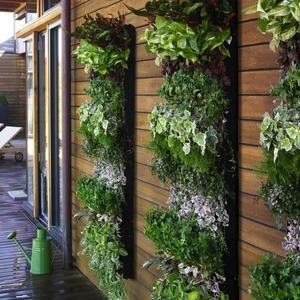 عکس - 10 روش غیرمعمول جهت نمایش گیاهان