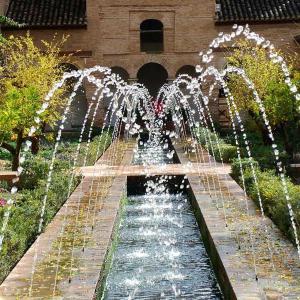 تصویر - فواره و آب نما در فضای سبز بیرونی - معماری