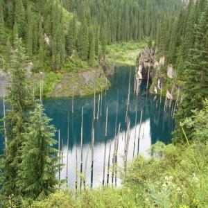 عکس - دریاچه KAINDY در قزاقستان