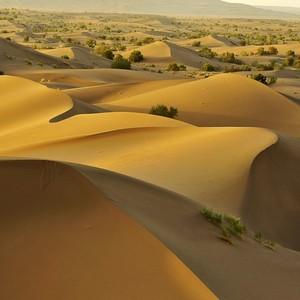 عکس - کویر مصر