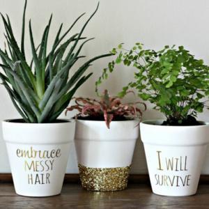 تصویر - خلاقانه ترین روشها برای تزیین گلدان - معماری