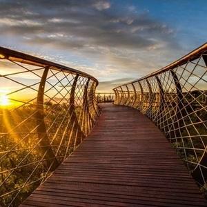 تصویر - زیباترین و جذاب ترین راه دنیا برای قدم زدن - معماری
