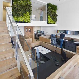 عکس - دیوارهای سبز، در دفترکاری واقع در سان فرانسیسکو