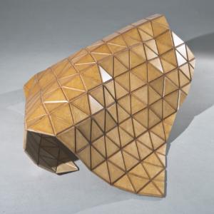 عکس - Woodskin: پوسته ای انعطاف پذیر از چوب
