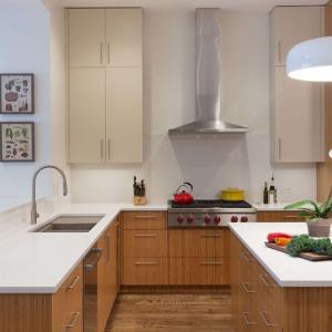 تصویر - طراحی داخلی آپارتمانی در نیویورک اثر Ben Herzog و Kiki Dennis - معماری