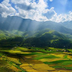 تصویر - مزارع بی نظیربرنج در منطقه Mu Cang Chai  ویتنام - معماری