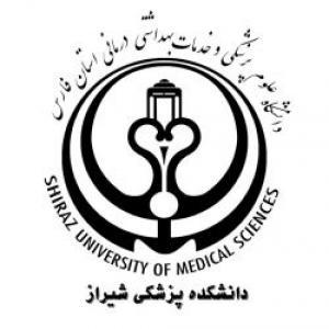 عکس - طراحی معماری سر در دانشکده پزشکی شیراز