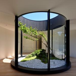 عکس - ایده پردازی ترکیب نور و طبیعت در طراحی داخلی