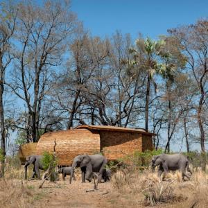 عکس - فضای اقامتی موقت Sandibe Okavango در بوتسوانا