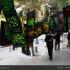عکس - در این خیابان موسیقى محرم عرضه میشود