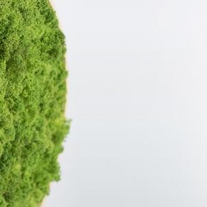 تصویر - ساعت سبز خزه ای - معماری