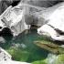 عکس - استخر طبیعی برزیل در نزدیکی پارک ملی چاپادا