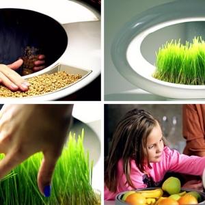 عکس - با این لامپ ،طبیعت را به خانه یا محل کار خود ببرید.