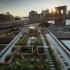 عکس - طراحی منظر و بام سبز آپارتمان بروکلین ،اثر تیم معماری leeser ،آمریکا