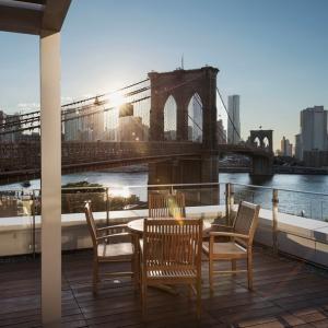 تصویر - طراحی منظر و بام سبز آپارتمان بروکلین ،اثر تیم معماری leeser ،آمریکا - معماری