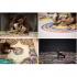 عکس - تابلو فرشهایی که از تزریق فوم مایع شکل گرفته اند.