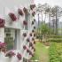 عکس - گلدانهای گل تعبیه شده در نمای ساختمان
