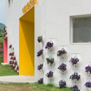 تصویر - گلدانهای گل تعبیه شده در نمای ساختمان - معماری