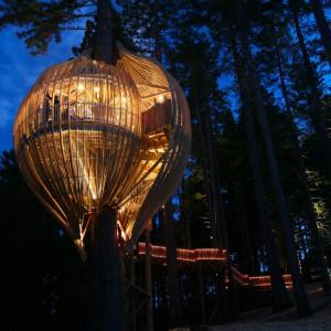 عکس - رستوران درختی زرد ، اثر تیم طراحی Pacific Environments , نیوزلند