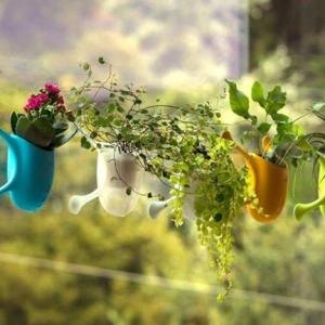 عکس - گلدان کوچکی که به هر سطحی می چسبد.