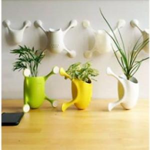 تصویر - گلدان کوچکی که به هر سطحی می چسبد. - معماری