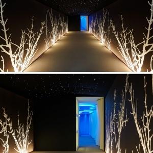 تصویر - طراحی اسپا و آبگرم جدید در بوسنی - معماری