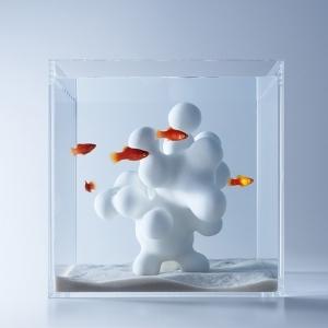 عکس - آکواریوم های haruka misawa ، خلاقیت در طراحی محیط زیست آبزیان