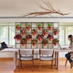 عکس - راهی آسان برای ایجاد باغ عمودی در فضای داخلی خانه