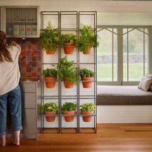 تصویر - راهی آسان برای ایجاد باغ عمودی در فضای داخلی خانه - معماری
