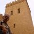 عکس - تجلیل از پروفسور عبدالمجید ارفعی در شهر آجر