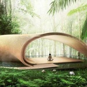 عکس - جوانه گندم , پیشنهاد معمار مطرح ژاپنی برای اقامتگاه جنگلی