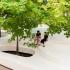 عکس - مبلمان شهری Le Banc de Neige ،اثر آتلیه طراحی Pierre Thibault ، کانادا