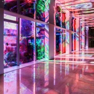 تصویر - باغ گالری دیجیتال به مناسبت بهار 2017 , اثر miguel chevalier , شانگهای چین - معماری