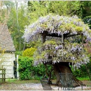 عکس - 10 ایده شگفت انگیز جهت استفاده از تنه درخت در دکوراسیون و طراحی محوطه