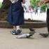 عکس - کفش هایی به شکل کبوتر در هماهنگی با حیات وحش پارک ایونو توکیو