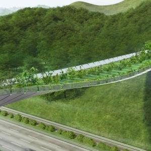 عکس - طراحی پلی میان زندگی شهری و حیات وحش کره