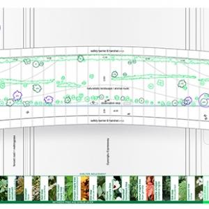 تصویر - طراحی پلی میان زندگی شهری و حیات وحش کره  - معماری