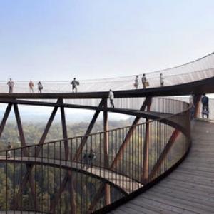 عکس - برج پانوراما در جنگلهای دانمارک