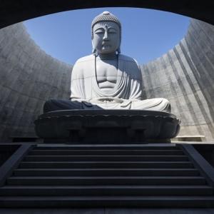 تصویر - تادائو آندو مجسمه غول پیکر بودای یک قبرستان ژاپنی را با گنبد و تپه احاطه کرد. - معماری