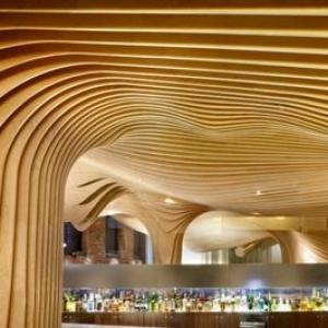 تصویر - افتتاح یک پروژه طراحی داخلی از نادر تهرانی در آمریکا - معماری
