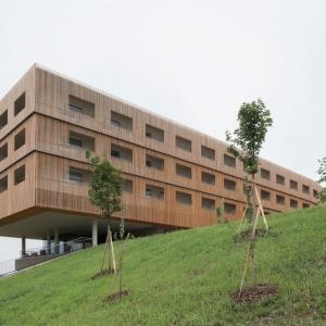 عکس - مجموعه اقامتی و اسپا Loisium , اثر مشاور معماری ArchitekturConsult , اتریش