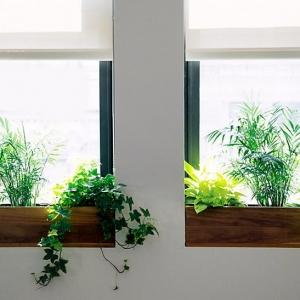 عکس - 7 ایده برای استفاده مفیدتر از فضای جلوی پنجره