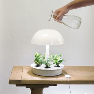 عکس - لامپ رومیزی مدرن Ambienta