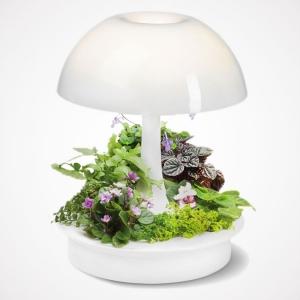 تصویر - لامپ رومیزی مدرن Ambienta - معماری
