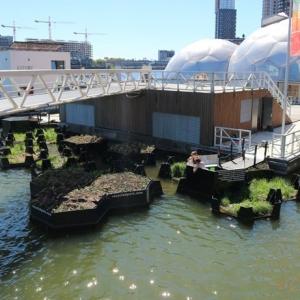 تصویر - پارک شناور روتردام از پلاستیکهای بازیافتی - معماری
