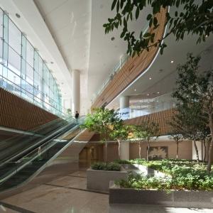 تصویر - اتاق های انتظار ،فضاهای پذیرش و حیاط ها:43 نمونه قابل توجه از معماری فضاهای بیمارستان - معماری