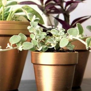 عکس - 9 ایده عالی برای ساختن گلدان های زیبا در خانه