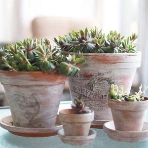 تصویر - 9 ایده عالی برای ساختن گلدان های زیبا در خانه - معماری