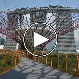 عکس - Moshe Safdie interview with Dezeen about the Marina Bay Sands , Singapore